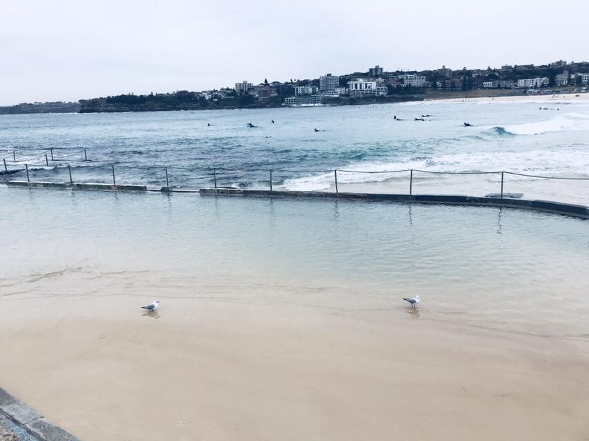 Avustralya'da bir Seloş